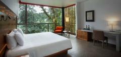 Mashpi Lodge - Wayra room